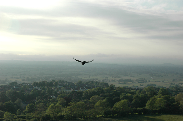 View from the top of Glastonbury Tor
