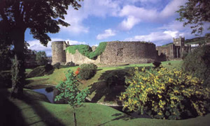 Rothesay Castle-photo from bestofbute.co.uk