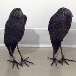 "Mark chatterly-""Crows"""